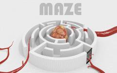 Img_small-maze-7